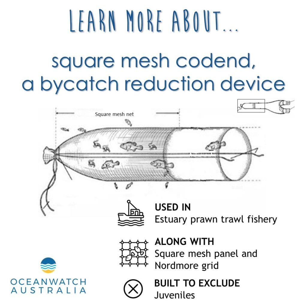A bycatch reduction device used in estuary prawn trawling is the square mesh codend. The codend of the mesh is made of a square mesh. The orientation of the mesh in this bycatch reduction device maintains the mesh opening allowing juvenile prawns and fish to escape whilst trawling.
